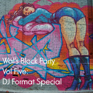 Wals Block Party 5 - a DJ Format Special Mix