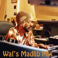 Wal's Madlib-FREE DOWNLOAD!