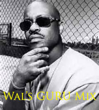 Wal's tribute to Guru mix-FREE Download!