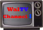 Welcome to WalTV Channel 1